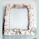 Coquina Dreams Nautical Seashell Picture Frame
