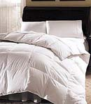 Pacific Coast Grandia Down Comforter