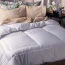 Pacific Coast Two Star Down Comforter